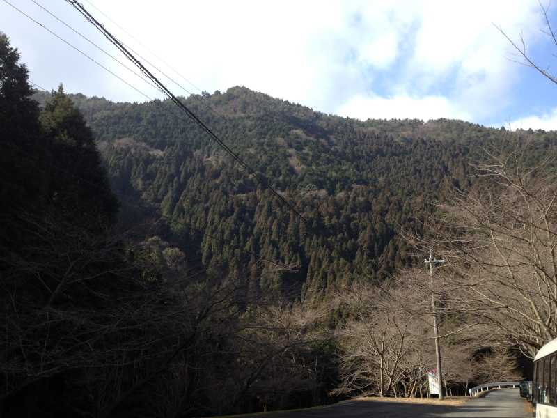 編妙の滝7