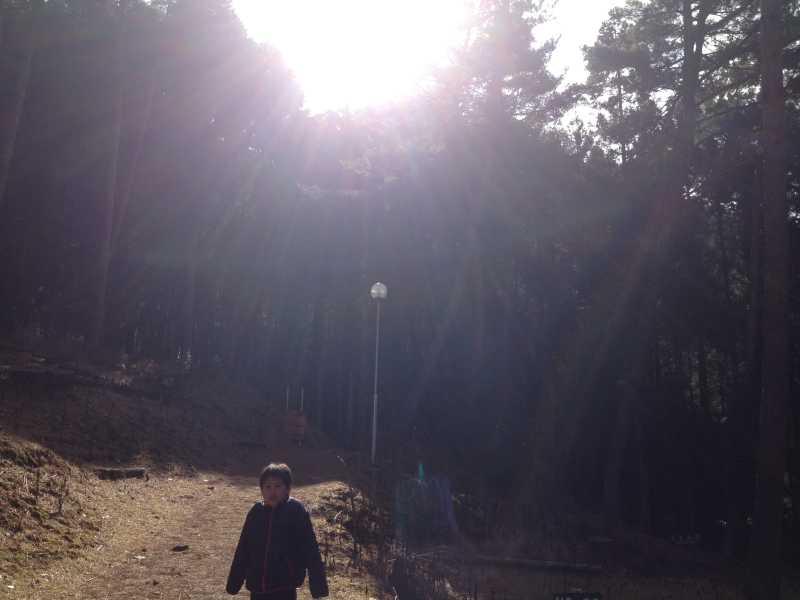 編妙の滝6