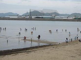 ako-sun-Beach