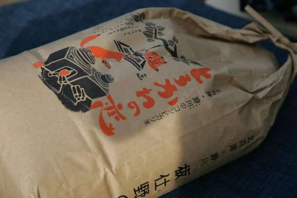koshiro-curry-hayagui-2016-03
