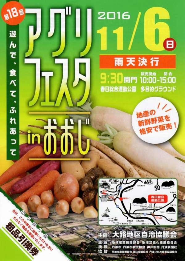 tanba-ooji-aguri-festa-2016-01