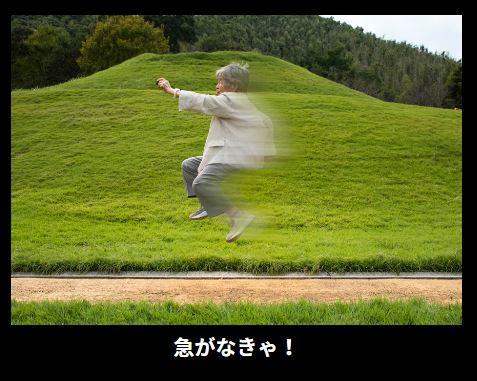 adobe-nishimoto-nenga-02