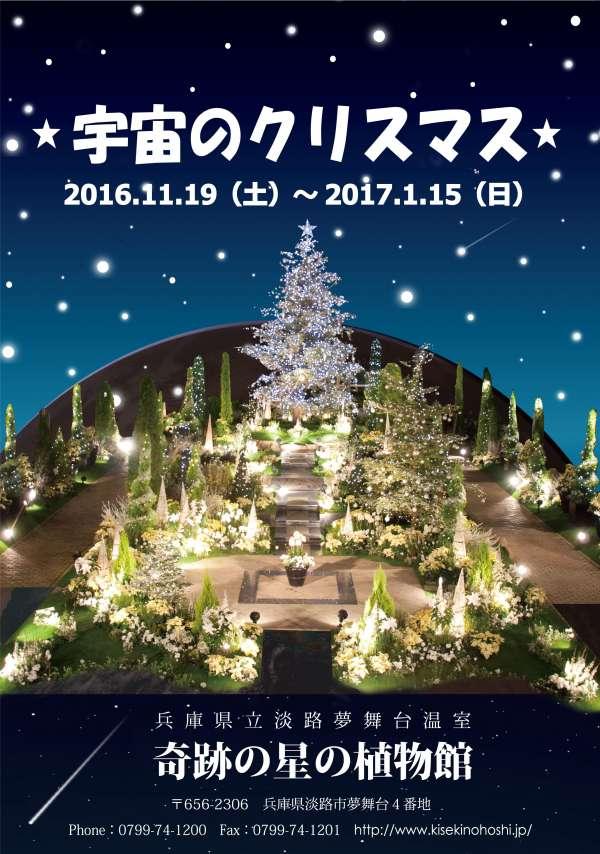 awaji-yumebutai-christmas-flower-show-2016-03