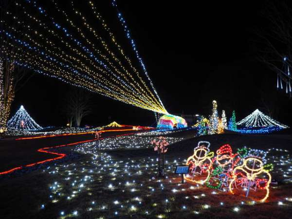 kasaishi-flower-center-christmas-illumination-2016-01