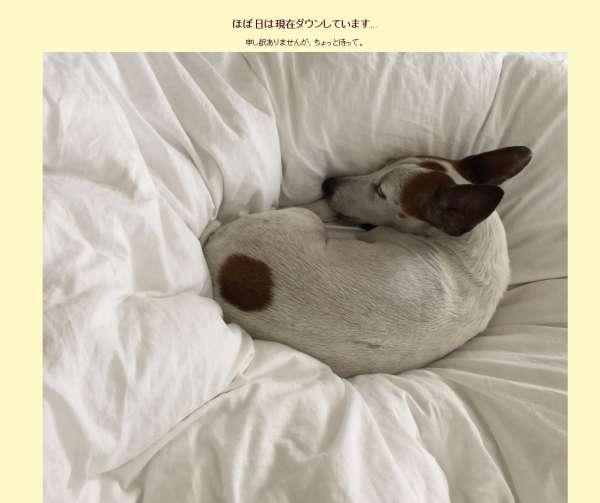 hobonichi-down