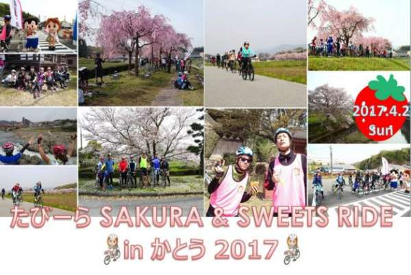 tabira-sakurasweets-ride-in-kato-2017-01