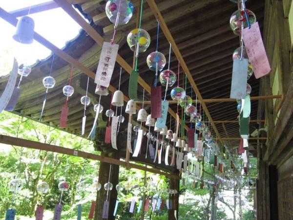 2020年7月1日(水)~9月13日(日)佐用町のフクロウを祀る「福を呼ぶ、ふくろうの寺」として知られる光明寺で「風鈴まつり2020」が開催
