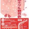ええ!そんなに!意外に多い、兵庫播磨で蛍が見れる場所 蛍ホタルまつりも続々開催!