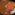 カレー・パスタ・ホットサンドウィッチ・珈琲の店「自家焙煎珈房 じょっぴんや」高砂市「土曜日の夜のじょっぴんや」実食レビュー