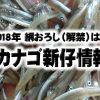 2018年【いかなご解禁情報】1,900円/kg前後!今年の解禁日・価格値段、イカナゴシンコ漁期は?