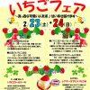 稲美町にじいろふぁ~みん(JA兵庫南直売所)【いちごフェア2019】が2019年2月23日(土)・24日(日)開催!場所は?